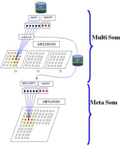 metamultisom1